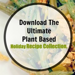 plant based holiday recipes